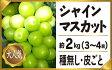 【ふるさと納税】シャインマスカット3-4房