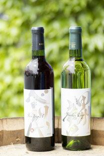 【ふるさと納税】モンデ酒造ワイン甲州辛口、ベーリーA2本セット 山梨 ワイン 赤ワイン 白ワインの画像