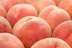 【ふるさと納税】 桃 山梨県産 約1.8kg 約6〜8玉入り 産地直送 フルーツ 画像2