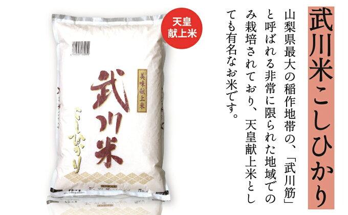 【ふるさと納税】山梨県産 武川米こしひかり5kg 米...