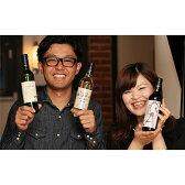 【ふるさと納税】山梨ワイン飲み比べセット(TO−09)甲州種2品とマスカット・ベリーAのハーフワイン3本セット
