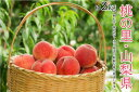 【ふるさと納税】【限定1000箱 先行予約】 日本一の桃の里...