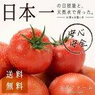 桃太郎トマト約1kg&スウィートスパイシートマトピューレ200g