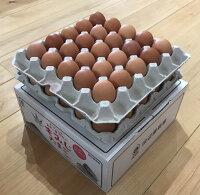 """【ふるさと納税】富士山の麓で育った産地直送""""忍野の卵""""50個入り"""
