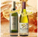 【ふるさと納税】オレンジワイン 2本セット R213☆話題!...