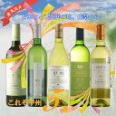 甲州シュール・リー 5本セット R310☆日本ワイン発祥の地...