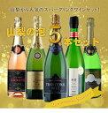 『山梨の泡』スパークリングワイン 5本セット R505☆日本...