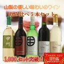 【ふるさと納税】飲み比べワイン 5本セット R206☆世界に認められた...