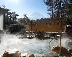 【ふるさと納税】No.012富士眺望の湯ゆらり入泉券2枚