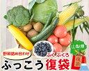 【ふるさと納税】【復興・復袋】富士山 野菜詰め合わせ