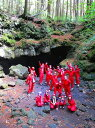 【ふるさと納税】富士山の噴火でできた「青木ヶ原樹海」の溶岩洞窟を探検!