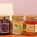 【ふるさと納税】信濃乃国の純粋はちみつとこの実 【蜂蜜・はちみつ・ハチミツ】