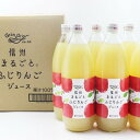 【ふるさと納税】信州ふじりんごジュース 1L×6本入 長野 お土産 お取り寄せ 【飲料類/果汁飲料/りんごジュース・リンゴ・じゅーす】