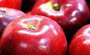 【ふるさと納税】【H31年度分先行予約】長野県産 紅玉 約4キロ 【果物類/林檎・りんご・リンゴ】 ...