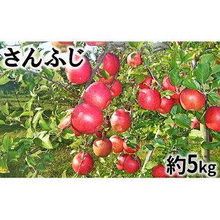 さんふじりんご