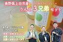 【ふるさと納税】010-042長野県上田市産りんご3兄弟のジ...