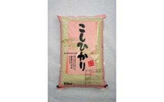 【ふるさと納税】012-027「関口さんちのお米」コシヒカリ10kg