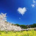 【ふるさと納税】005-007 12枚組ポストカードセット2冊セット(信州上田癒しの風景・信州の絶景
