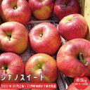 【ふるさと納税】シナノスイート 約5kg(約13玉~約20玉)《市川ファーム》■2021年発送■※10月上旬頃より順次発送予定 フルーツ 果物 りんご リンゴ シナノスイート