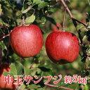 【ふるさと納税】サンふじ中玉 約5kg《なかむら農園》■2021年発送■※11月上旬頃より発送 果物類 林檎 りんご リンゴ