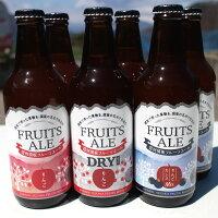 【ふるさと納税】信州須坂フルーツエール3種6本セット【お酒・フルーツビール・りんご】