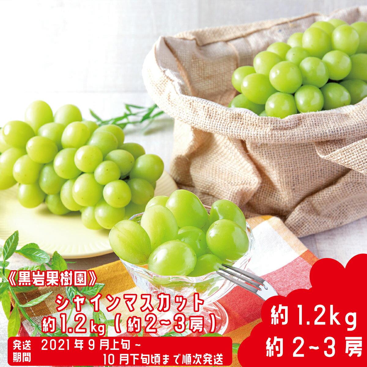 【楽天市場】黒岩果樹園 約2~3房の通販