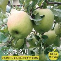 【ふるさと納税】ぐんま名月(生食りんご)約5kg約12~20玉《中沢農園》■2021年発送■※11月中旬頃より順次発送予定フルーツ果物りんごリンゴ林檎