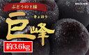 【ふるさと納税】☆先行予約【人気のブドウ】巨峰 約3.6kg...