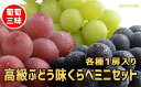 【ふるさと納税】☆先行予約 葡萄三昧 高級ぶどう味くらべミニ...