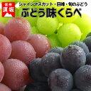 【ふるさと納税】☆先行予約 葡萄三昧 高級ぶどう味くらべセッ
