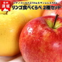 【ふるさと納税】食べくらべ2種セット 約5kg(シナノゴールド&サンふじ)《信州グルメ市場》■2021年発送■※11月中旬頃より順次発送予定 果物 フルーツ 林檎 りんご リンゴ