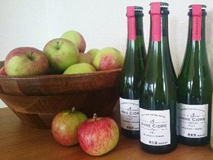 シードル(小諸産りんごの発泡酒) 【お酒/ワイン】