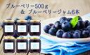 【ふるさと納税】ブルーベリー500g&ブルーベリージャム6本...