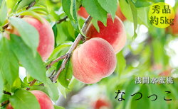 【ふるさと納税】浅間水蜜桃 みつおかのもも なつっこ 秀品 約5kg 【果物・もも・桃・モモ・フルーツ・水蜜桃・ 約5kg】 お届け:2021年8月中旬〜8月下旬※天候によりお届け時期が前後する場合があります※・・・ 画像1