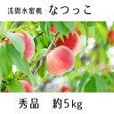 【ふるさと納税】浅間水蜜桃 みつおかのもも なつっこ 秀品 約5kg 【果物・もも・桃・モモ・フルーツ・水蜜桃・ 約5kg】 お届け:2021年8月中旬〜8月下旬※天候によりお届け時期が前後する場合があります※・・・