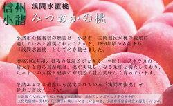 【ふるさと納税】浅間水蜜桃 みつおかのもも なつっこ 秀品 約5kg 【果物・もも・桃・モモ・フルーツ・水蜜桃・ 約5kg】 お届け:2021年8月中旬〜8月下旬※天候によりお届け時期が前後する場合があります※・・・ 画像2