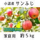 【ふるさと納税】信州小諸産 サンふじりんご 家庭用 約5kg 【果物類・林檎・りんご・リンゴ・サンふじ・家庭用・約5kg】 お届け:2021年11月下旬〜12月上旬