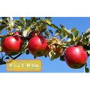 【ふるさと納税】信州小諸・福井りんご園のサンふじ 秀品 約5kg 【果物類・林檎・りんご・リンゴ・サンふじ・約5kg】 お届け:2021年11月下旬〜12月下旬