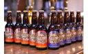 【ふるさと納税】南信州ビール 2種セット 【お酒/ビール】
