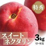 【ふるさと納税】<先行予約>スイートネクタリン特秀3kg(12〜18玉)