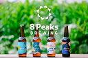 【ふるさと納税】八ヶ岳山麓のクラフトビール6本セット×2回発送