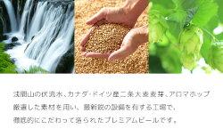 【ふるさと納税】飲み比べセット24缶THE軽井沢ビール 【お酒・ビール】 画像2