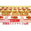 【ふるさと納税】SKファームの高糖度ミニトマト(約1kg) 【野菜・ミニトマト・トマト】