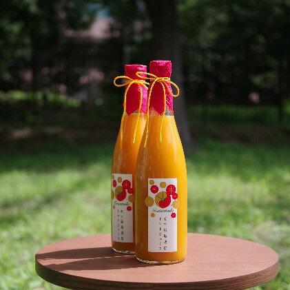 【ふるさと納税】トマトードジュース【紅黄】  【果汁飲料・野菜飲料・トマトジュース】