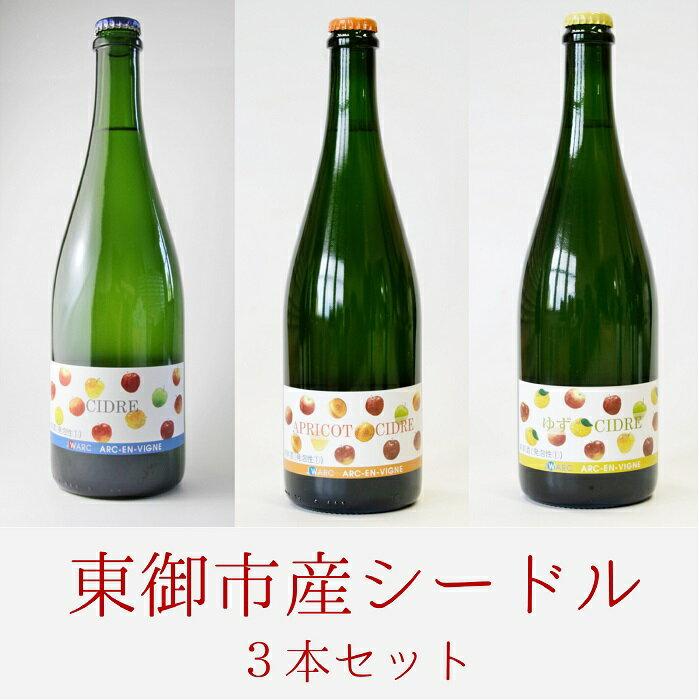 【ふるさと納税】東御市産シードル3本セット(アルカンヴィーニュ産)