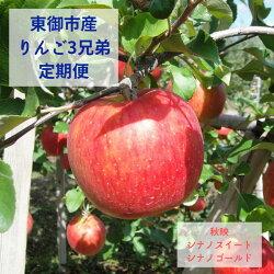 東御市産りんご