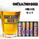 【ふるさと納税】NEWオラホビール 10缶セット