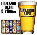 【ふるさと納税】オラホビール10缶(クラウドファンディング対象)