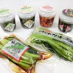 【ふるさと納税】野沢菜(こんぶ・浅漬)とエリンギキムチ計6種詰合せセット【1071600】