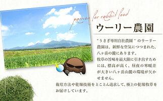 【ふるさと納税】【うさぎ用】富士見町産牧草セット(180g×3種類)【雑貨・日用品・ペット用品・ペットフード・ウサギ】